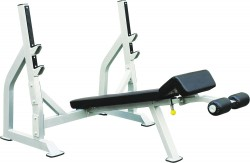 CS6 Decline Bench Press